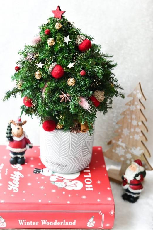 花藝、花禮裝飾-2020-11-23,2020聖誕花禮(照片1)